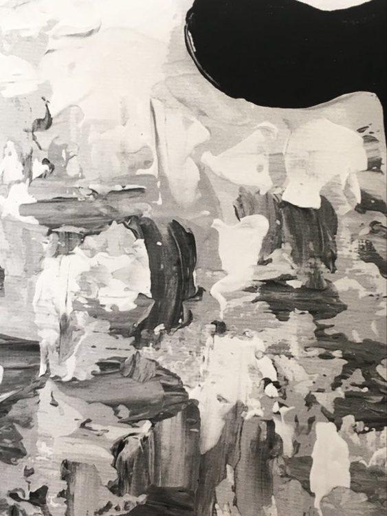 Svart-vit-grå print till ditt hems tavelvägg. Tavla med djur. Djurmotiv i form av får.