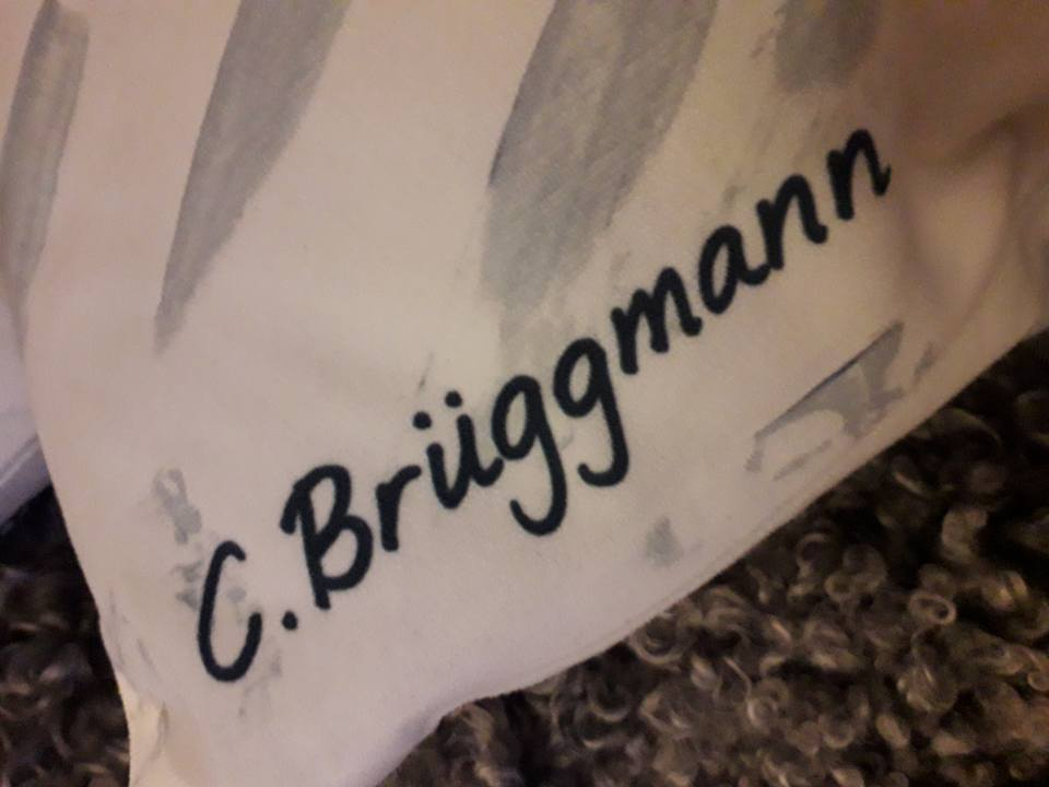 Konst inspirerad av Gotland. Fårkudde med design av C.Brüggmann. Kuddfodral till soffan. Fårkuddar.