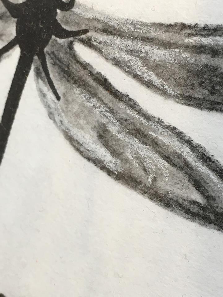 Närbild på trollsländans vinge som är målad av svenska nutidskonstnären C.Brüggmann.