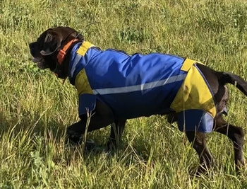Swevest 3.0 Dog protection