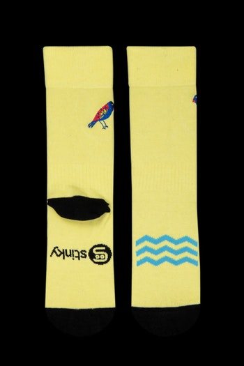 Stinky Socks Surfing Bird