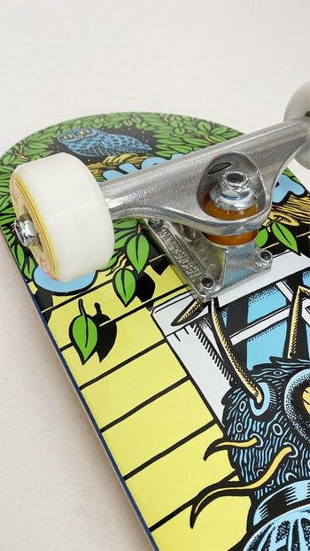 Pro Complete Chrononaut ''The Fly'' * Independent trucks