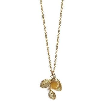 Guldförgyllt halsband med kvist