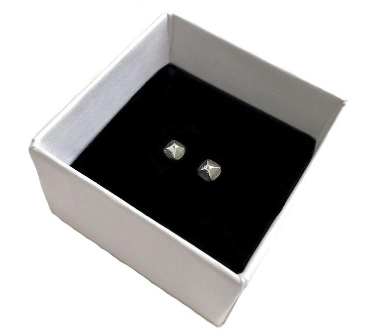 Nitörhängen herr. Stiftörhängen med små fyrkantiga nitar silver.