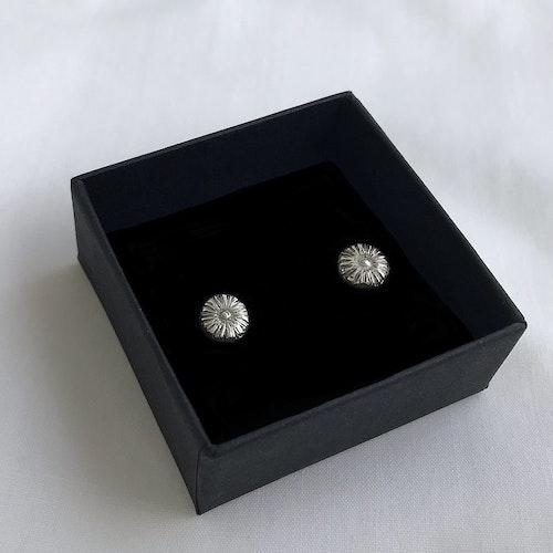 Silverörhängen små blommor