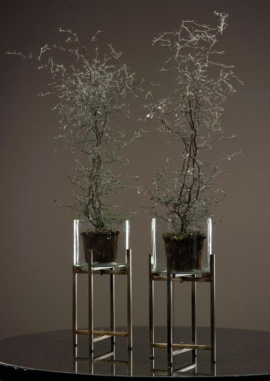 Glascylinder på stativ 13 cm