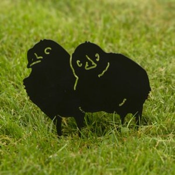 Siluett två kycklingar