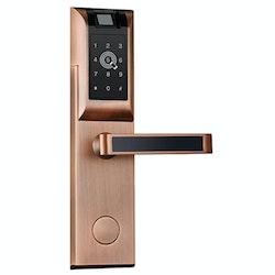 Digitalt dörrlås med Fingeravtryck Lösenord RFID APP Brons