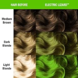 Electric Lizard - Classic