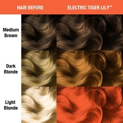Electric Tiger Lily - Classic