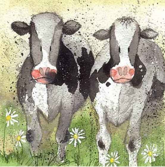 Alex Clark Curious Cows Card
