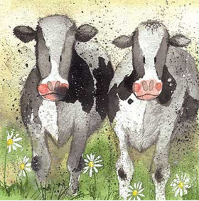 "Alex Clark Kort ""Curious Cows"""