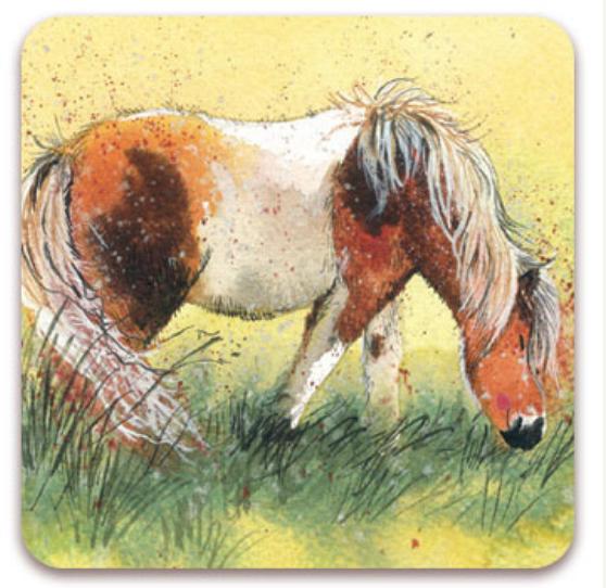 """Alex Clark Kylskåpsmagnet """"Shetland Pony"""""""