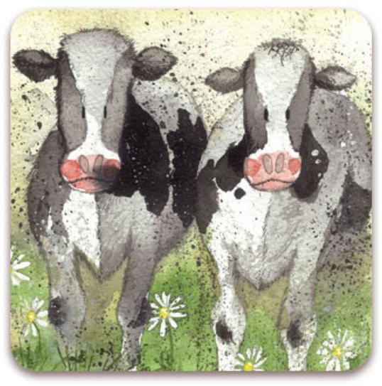Fridge Magnet Curious Cows/ Kylskåpsmagnet Curious Cows