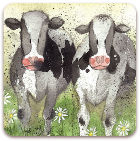 Fridge Magnet Curious Cows/ Kylskåpsmagnet Curious Cows
