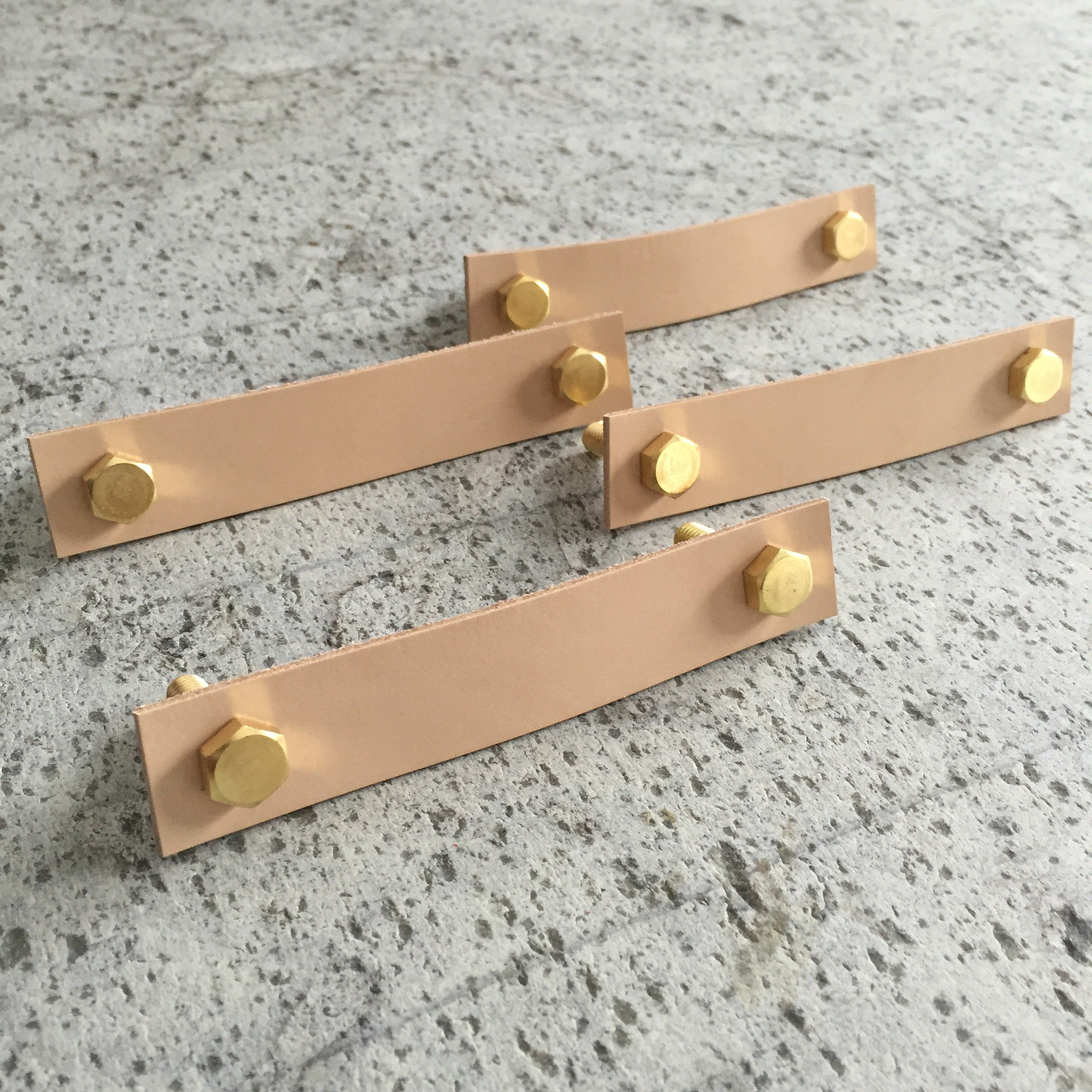 Leather & Brass Handles