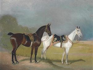 TVÅ VACKRA HÄSTAR 1904 av ALFONSO GRAY