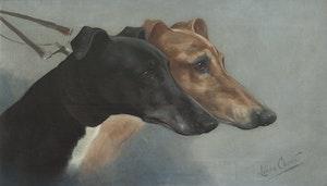 VINTHUNDAR WATERLOO CUP 1914 av CHEVIOT Greyhound KONSTTRYCK PÅ DUK