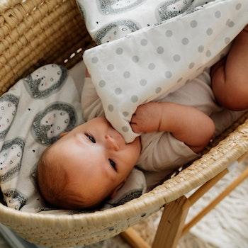 Pulp Eko Bomull bebistäcke och kudde 72cm x 52 cm, Hedgehogs