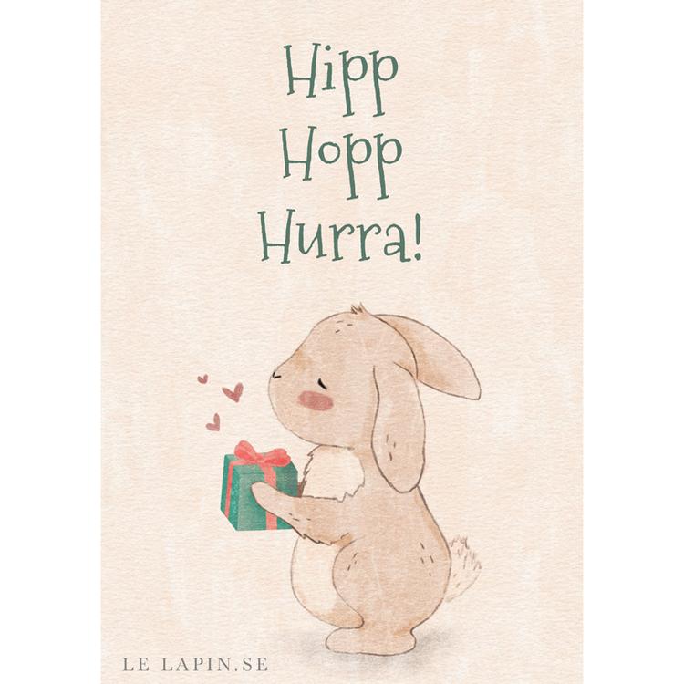 Kanin med paket - Hipp Hopp Hurra - Vykort