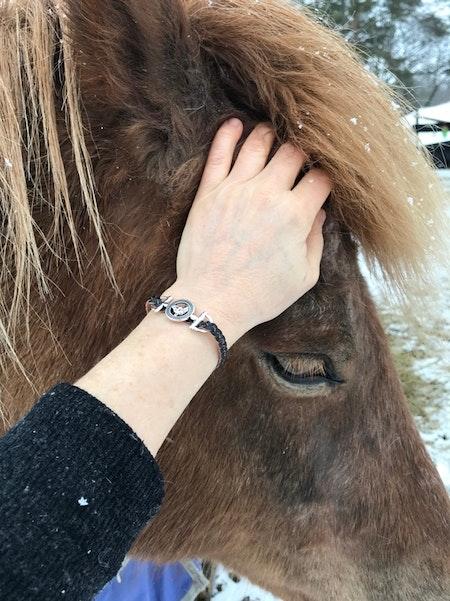 HästBiten
