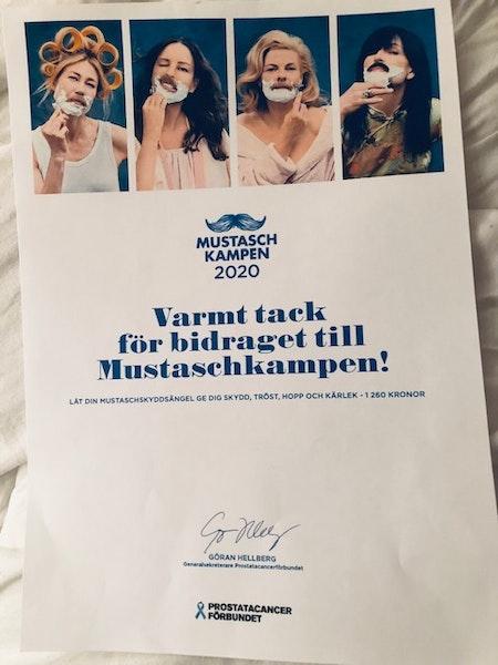 MustaschSkyddsÄngel Rosenkvarts