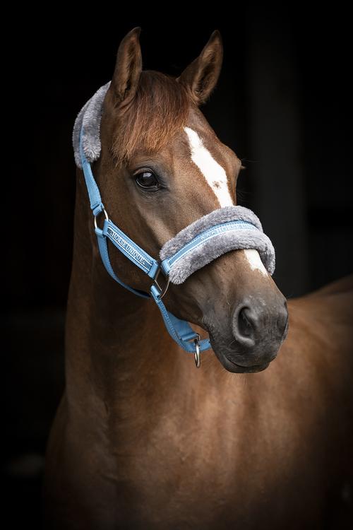 Horse UNIQUE