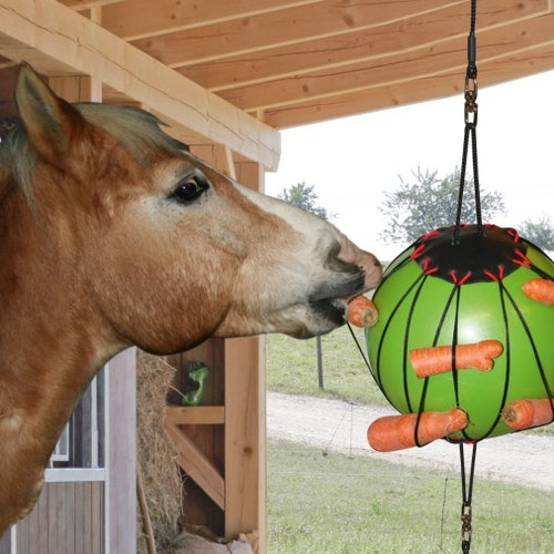 Therapy Play Ball for Horses