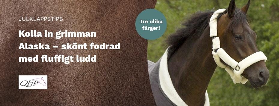 Loveyourhorse Sweden AB