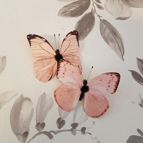 Fjärilar creme