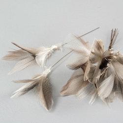 Fjäderblomma sick-sack
