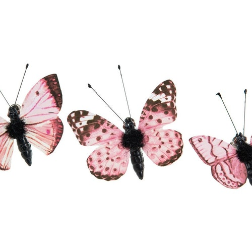 Fjärilar små rosa/korall