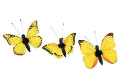Fjärilar små gula