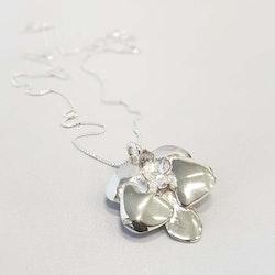 Halsband Orkide-KRAAM
