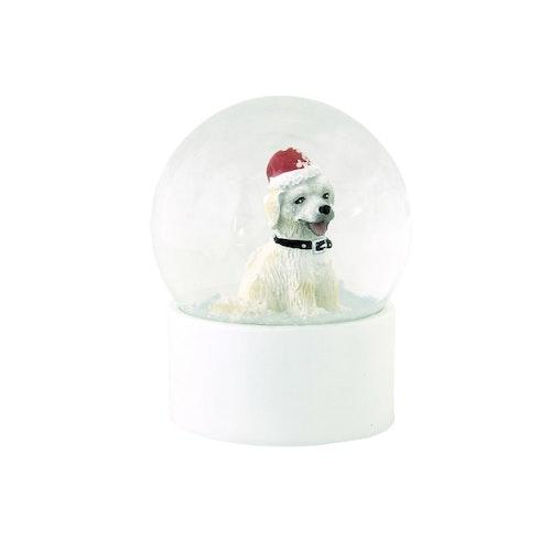 Snöglob hund