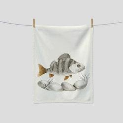Kökshandduk fisk- CHARLOTTE NICOLIN