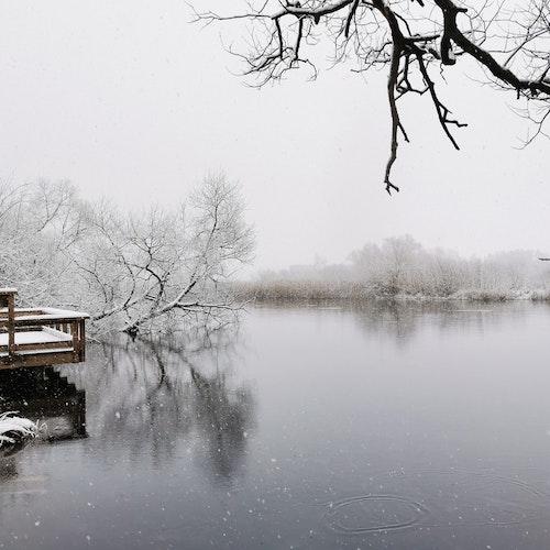 Print Snö över ån