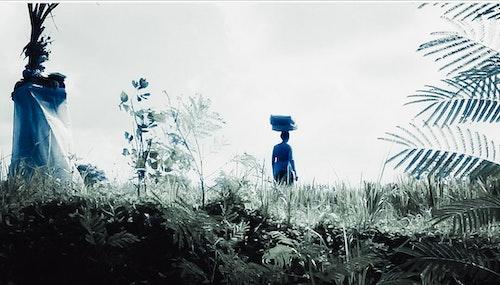 Print Kvinna på risfält