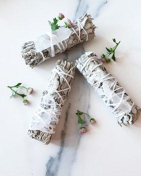 Salviabunt med bergristall