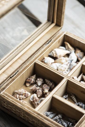 Smyckesskrin/ kristallförvaring, rotting