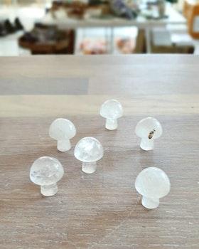 Minisvamp, bergkristall