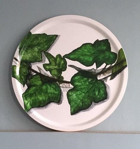 Murgröna 65