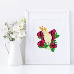 Kakadua