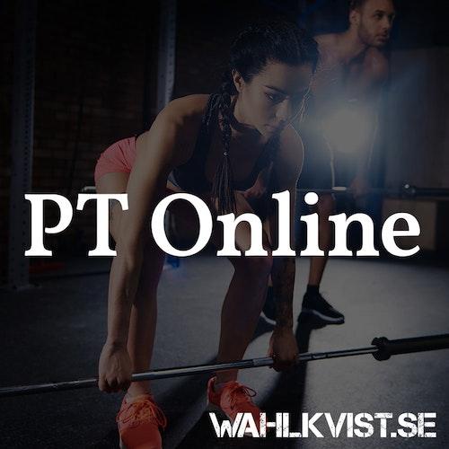 PT Online