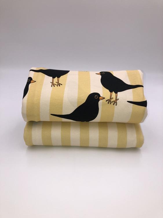 Blackbird Lemon (008) Jersey