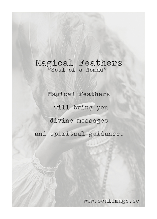 Soul Image - Magical Feathers