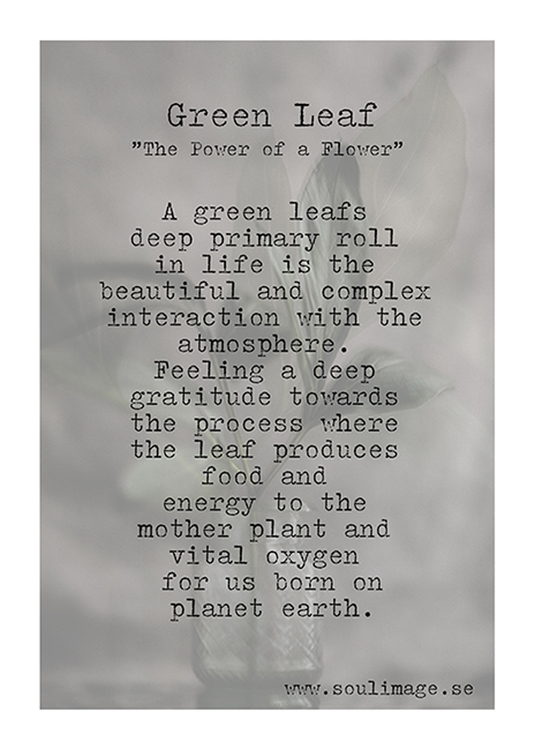 Soul Image - Green Leaf