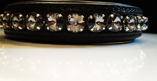 Delight dog collar #1