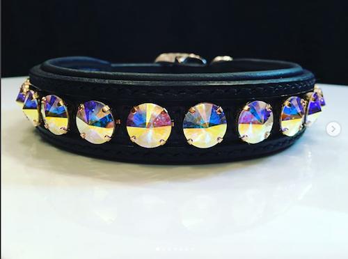 Delight dog collar #2