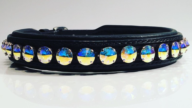 Delight dog collar #2